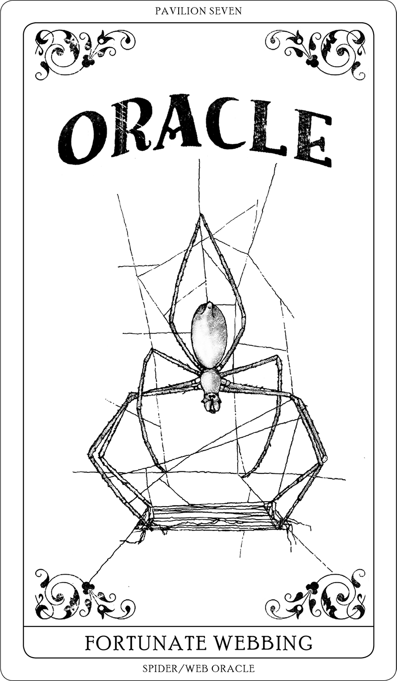 Spider/Web Pavilion 7