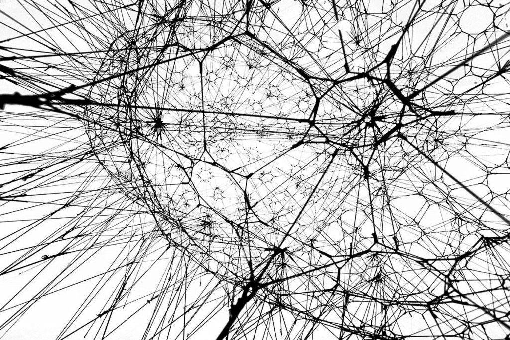 Galaxies Forming along Filaments, like Droplets along the Strands of a Spider's Web